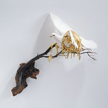 Carlee Fernandez, White Pigeon with Gold, 2005, Altered taxidermy, branches and gold leaf