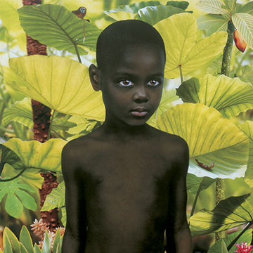 Ruud van Empel, World #2, 2005, Cibachrome, Plexiglass and aluminum